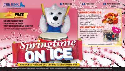 Spring Time on Ice 2017